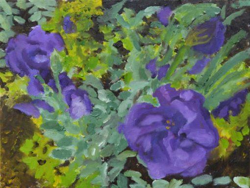 Flowers of Longwood Gardens I
