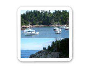 Coastal Maine Coaster